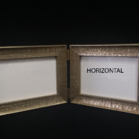 1_Gold-Horizontal