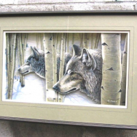 Wolves in Birch Forest