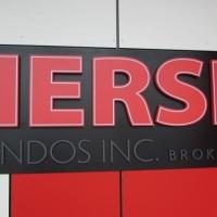 HERSH 3 D Logo 005