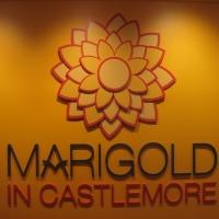 marigold-2014-3d-logo