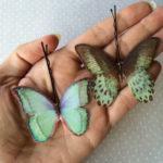 Butterfly Hair Pins