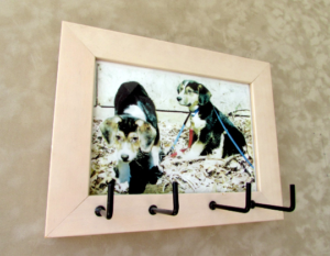 Art Picture Light Peach Maple Frame with Hooks Organizer